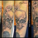 Crâne noir et gris