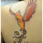 Tatouage phoenix couleurs