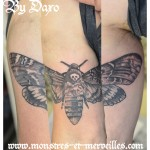 Tatouage papillon sphinx