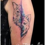 Tatouage chien chat aquarelle