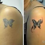 Rafraîchissement et modification de tatouage - Papillon