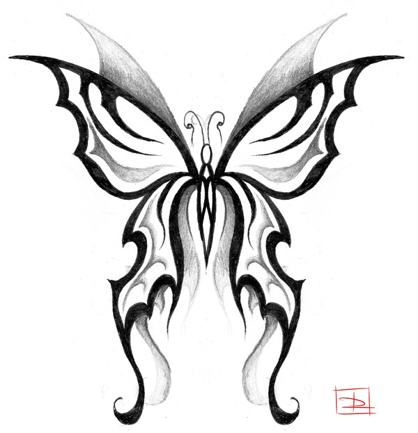 Fees tribal - Tatouage papillon de nuit ...