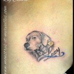 Tatouage de Dogue argentin